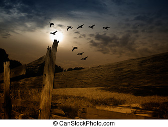Full moon Geese migration - Geese fly migrate south across...