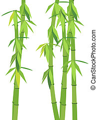 Green bamboo with leaves