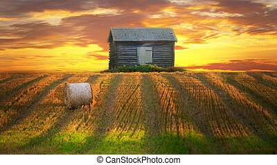 Rural landscape in evening with hay bale in focus in...