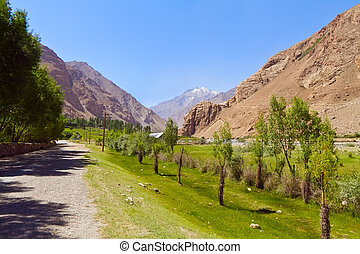 The road in valley of Pamirs. View of afghan mountains