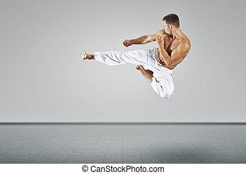 marcial, artes, mestre