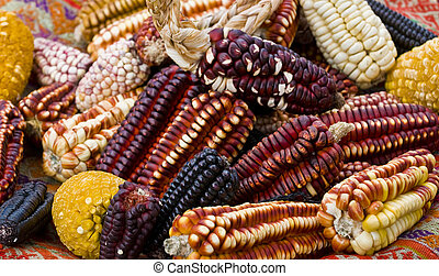 Corn - Different types of corn on a market in Peru