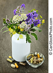Herbal medicine and plants - Herb plants with mix of...