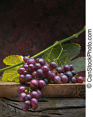 Art bunch  grapes with leaves on dark background