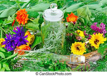 ervas, medicina, ou, Cozinhar, fresco, jardim