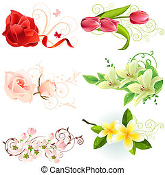 Set of different beautiful floral design elements