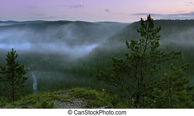 timelapse fog rising up above night forest, view from rock