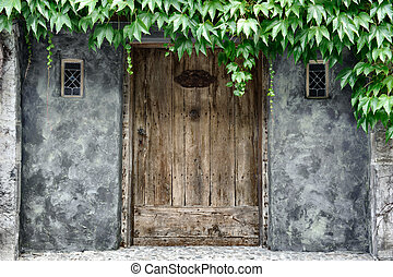 Vintage door covered by lianas