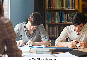 Members of a study group working
