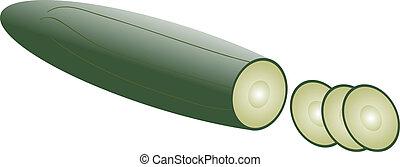 cucumber - illustration of cucumber - vector