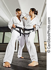 martial arts masters - An image of a women and a man...