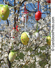 Easter eggs on tree - Easter eggs decorated on blooming tree