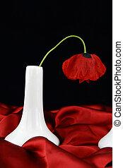 White vase with poppy flower
