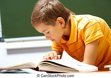 Reading lad - Portrait of smart lad reading book at his...