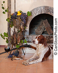 Gun dog near to shot-gun, trophies and glass of wine against...