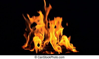 Fire flame on balck background SLOW MOTION LOOPIN