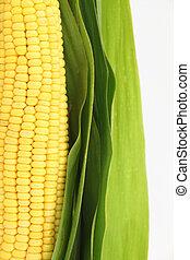 新鮮, 玉米, 綠色, 離開