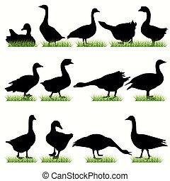 12 Gooses Silhouettes Set