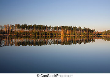 autumn lake forest