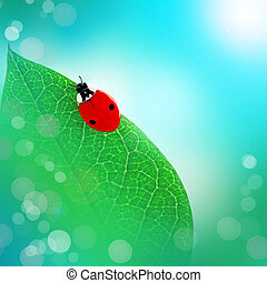 Art picture with ladybird