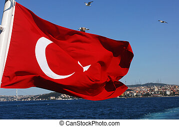 Turkish flag - a turkish flag with asian river