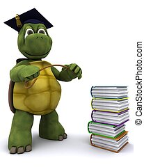 Tortoise teacher with a stack of books