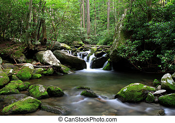 cascading mountain stream - smokey mountain cascading stream...