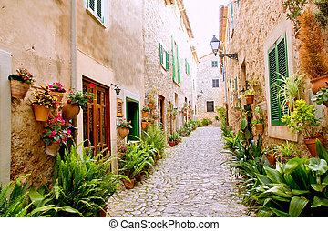 Mallorca, Valldemossa, típico, flor, ollas, fachada