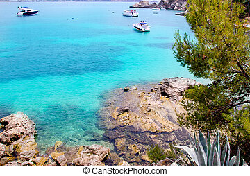 Calvia Cala Fornells turquoise mediterranean in Majorca at...