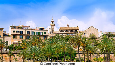 Majorca Cathedral garden with palm trees and Calatrava...
