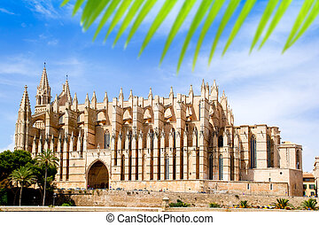 Cathedral of Majorca La seu from Palma de Mallorca in...