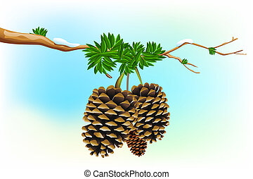 Dry Pine - illustration of dry pine fruit in tree branch
