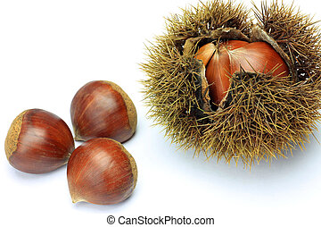 chestnut - I took few chestnuts in a white background