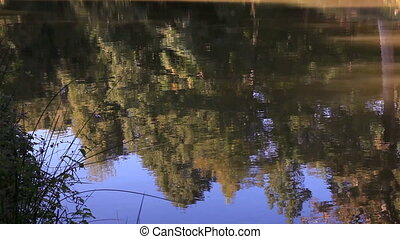 Silhouette tree 3 - tree reflection on the lake, shoot Canon...