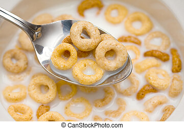 Breakfast cereal in bowl with milk