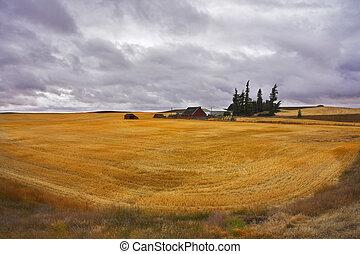 The farm in fields of Montana - Small farm in fields of...