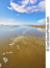 The sand during outflow - Wide sandy beach and sea foam on...