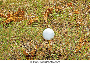 Golf ball - White golf ball on a tee in the grass