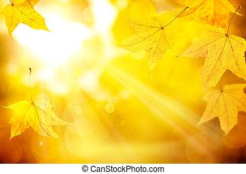 abstract orange autumn background - the sun's rays pass...
