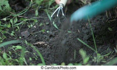Planting process - Human hands making a pit and planting a...