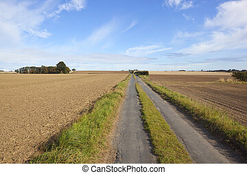 english country road - a small rural road running through...