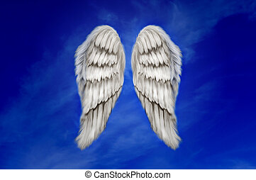 Angel Wings - Angel wings on a dark blue sky