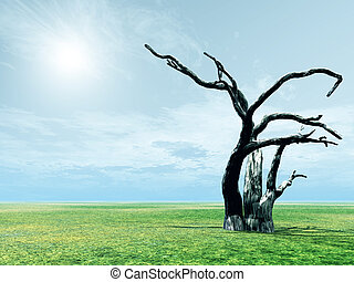 Scenery with dead tree