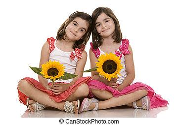 meninas, gêmeos
