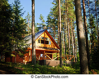 log House in the forest - Wooden log House in the sunny...
