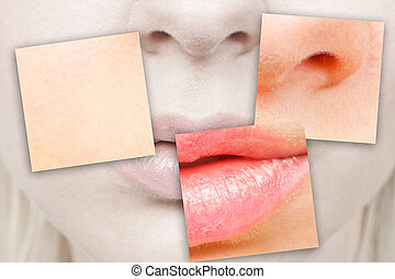 Nose and mouth - Close-up details of a woman's face - the...