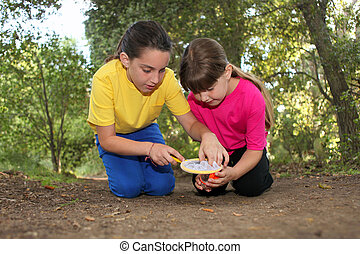 Bug Hunting in the Woods - Sibling Girls Hunting for Insects...