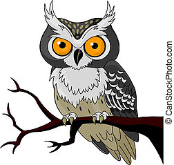 Night Owl - Owl sitting upon a tree branch