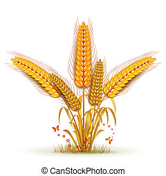 Wheat sheaf arrangement