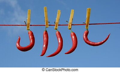 five red peppers on clothes-line